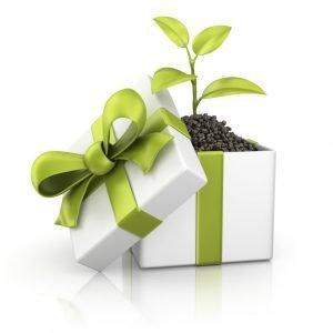 Cadeau!